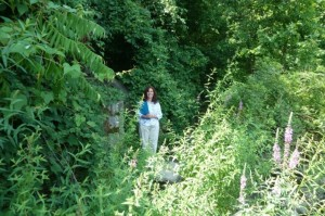 Grant writer Suzanne Zlotnick at the base of the stream bank, next to the historic retaining wall covered mainly by invasive species