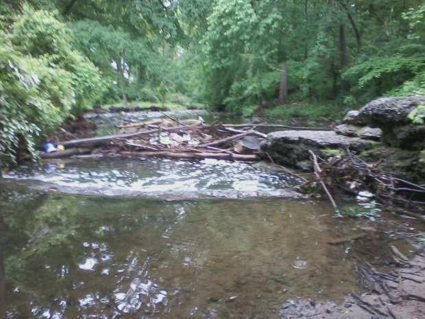 Poquessing Creek #8 5-29-17